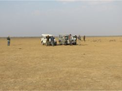 Little Rann of Kachchh